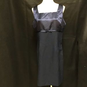Dark Blue Sleeveless Sheath